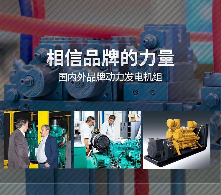 相信品牌的力量 国内外品牌动力发电机组